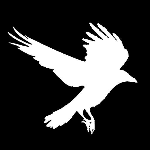 Silhouette d'un corbeau